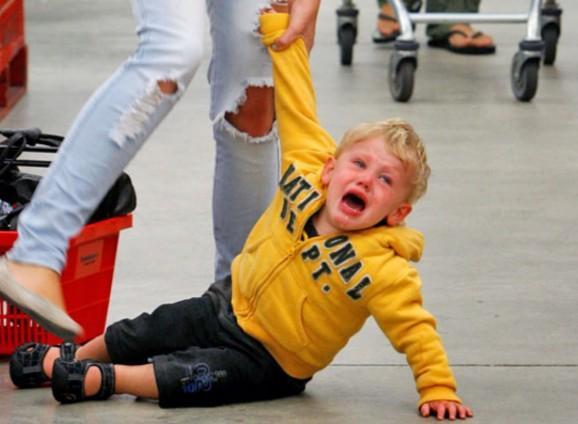 как убедить родителей купить хомяка без истерик