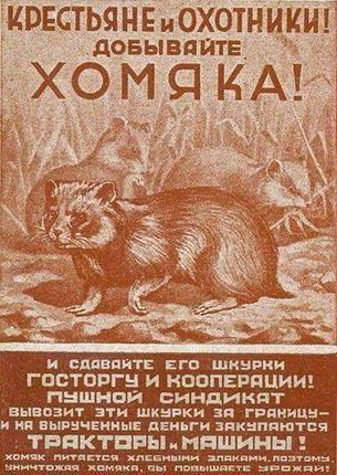 Агитплакат СССР - добывайте хомяка!